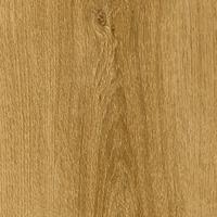 Arizona Oak 448